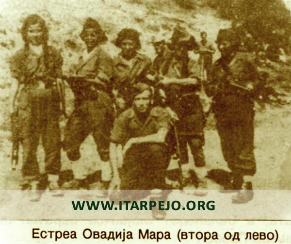 Борбите нa подрачјето нa селото Градешница