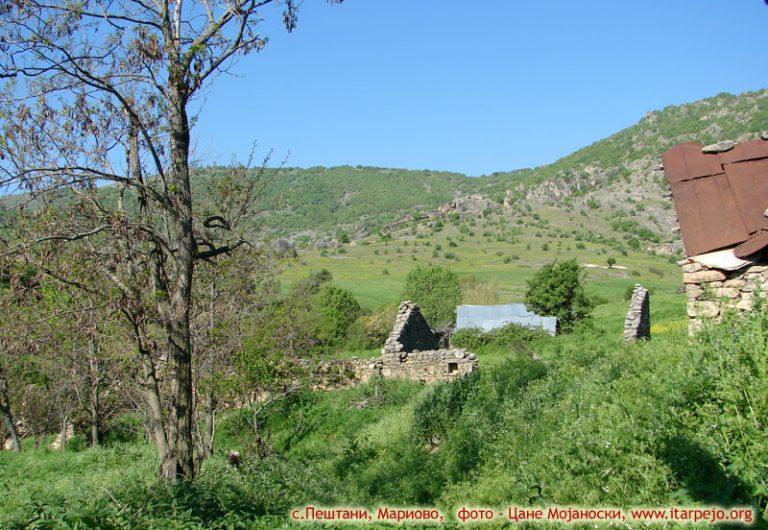 Пештани (Pestani) село во Прилепско Мариово