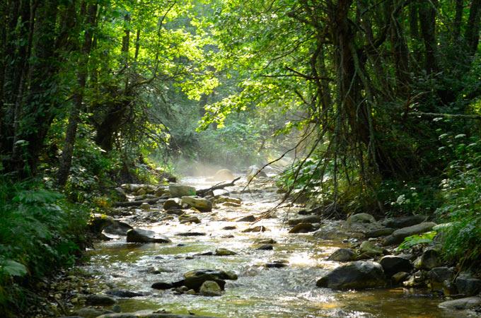 bela reka 06