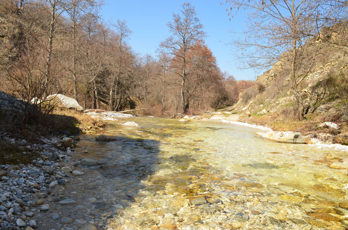 bela reka 08